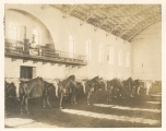 [Old Riding Hall]